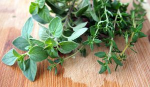 Oregano Oil - Home Remedies For Oral Thrush