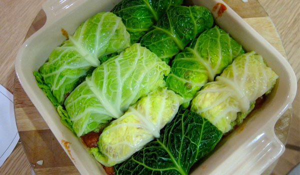 cabbage 3