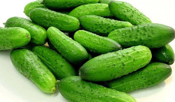 cucumber 4